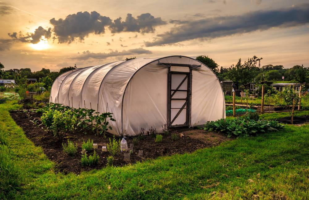 Nuevas ayudas al emprendedor y pymes rurales en Guadalajara
