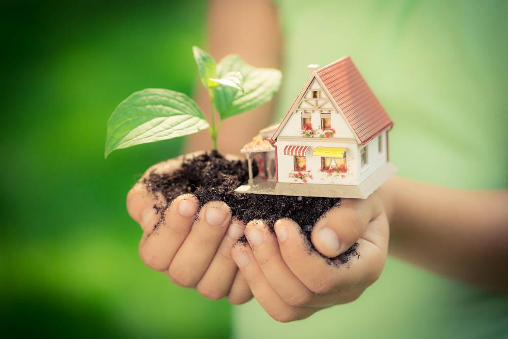 Haz de tu casa un sitio ecológico y saludable
